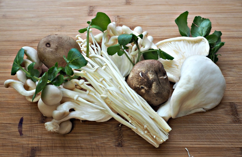 mushroom-fritters-2