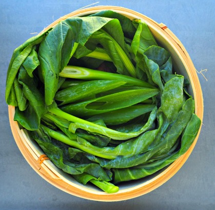 chinese-broccoli-5